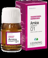 Lehning Arnica Complexe N° 1 Solution Buvable En Gouttes Fl/30ml à NEUILLY SUR MARNE