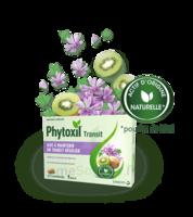 Phytoxil Transit Comprimés B/20 à NEUILLY SUR MARNE
