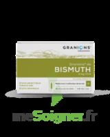 Granions De Bismuth 2 Mg/2 Ml S Buv 10amp/2ml à NEUILLY SUR MARNE