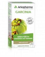 Arkogélules Garcinia Gélules Fl/45 à NEUILLY SUR MARNE