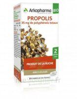 Arkogélules Propolis Bio Gélules Fl/45 à NEUILLY SUR MARNE