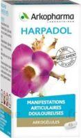 Arkogelules Harpagophyton Gélules Fl/150 à NEUILLY SUR MARNE