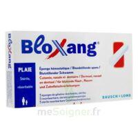 Bloxang Eponge De Gélatine Stérile Hémostatique B/5 à NEUILLY SUR MARNE