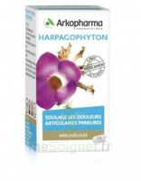 Arkogelules Harpagophyton Gélules Fl/45 à NEUILLY SUR MARNE