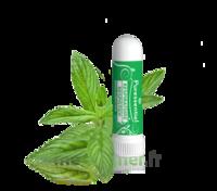 Puressentiel Respiratoire Inhaleur Respiratoire Aux 19 Huiles Essentielles - 1 Ml à NEUILLY SUR MARNE