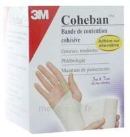 Coheban, Blanc 3 M X 7 Cm à NEUILLY SUR MARNE