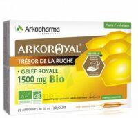 Arkoroyal Gelée Royale Bio 1500 Mg Solution Buvable 20 Ampoules/10ml à NEUILLY SUR MARNE