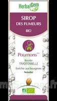 Herbalgem Sirop Bio Des Fumeurs 150ml à NEUILLY SUR MARNE