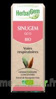 Herbalgem Sinugem Solution Buvable Bio Spray/15ml à NEUILLY SUR MARNE