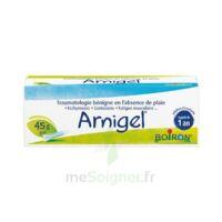 Boiron Arnigel Gel T(alumino-plastique)/45g à NEUILLY SUR MARNE